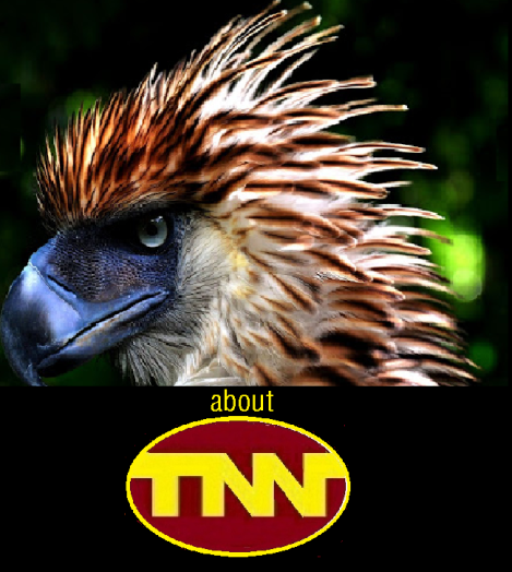 ABOUT TNN 2.png