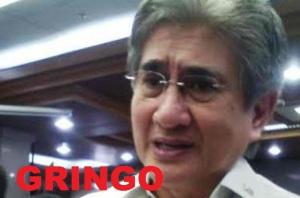 senator_gringo_honasan_0_1