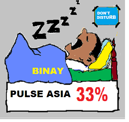 binay pulse asia