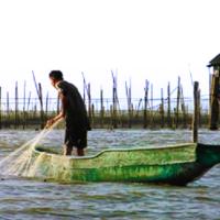 DENR: No more fish pens in Laguna Lake