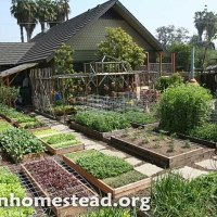 Small-Scale Organic Farming The Only Way To Feed The World